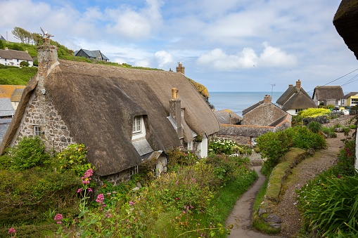 Cottages with thatched roofs after lawn dethatching.