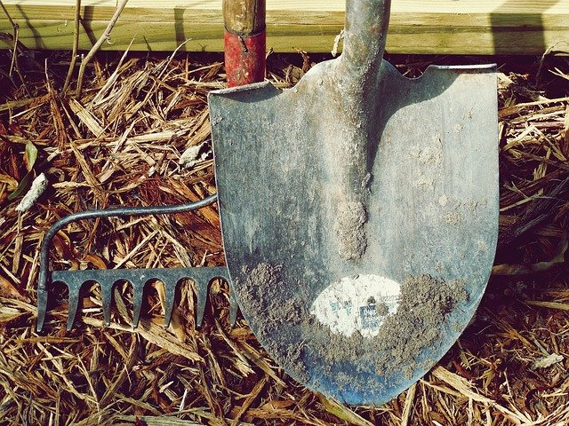 Essential Gardening Tools You Must Have