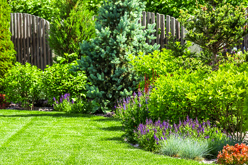 How Landscaping Can Increase Your Home's Value
