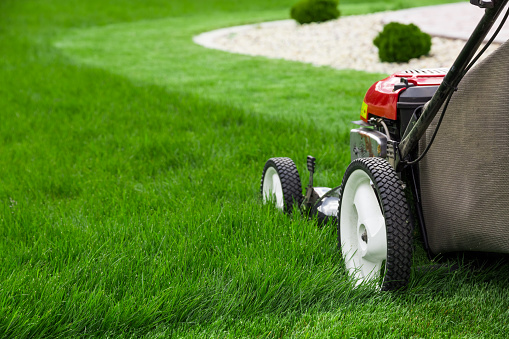 Tips To Remember When Mowing Your Lawn