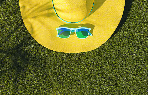 How To Keep Your Lawn Healthy In Summer Heat